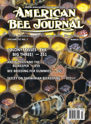 American Bee Journal, cover photo of honey bees