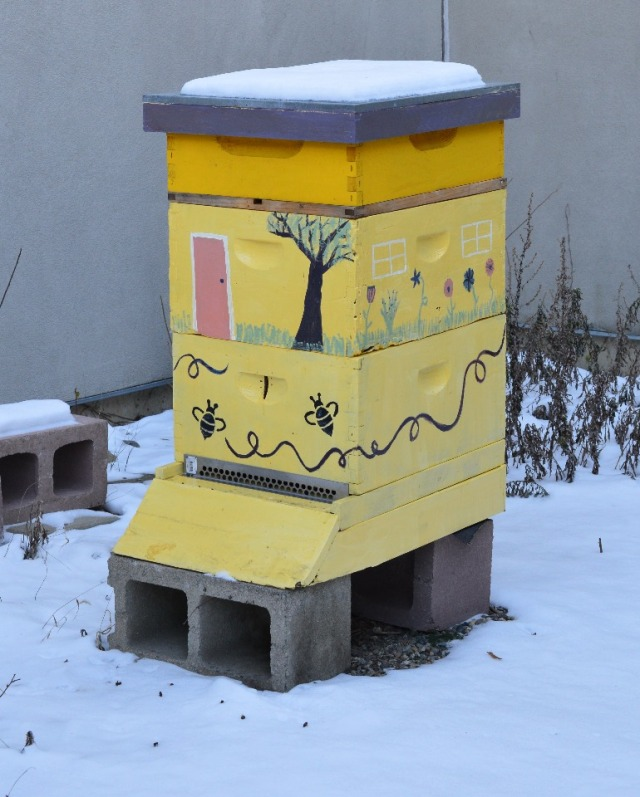Langstroth hive in the wintertime.