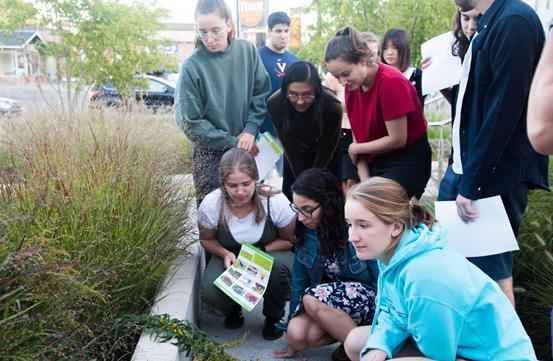 Pollination Ecology students doing fieldwork